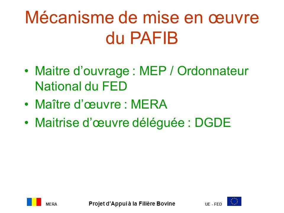 Mécanisme de mise en œuvre du PAFIB