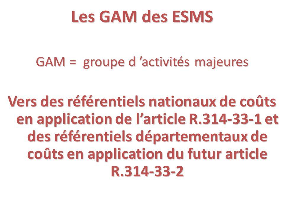GAM = groupe d 'activités majeures