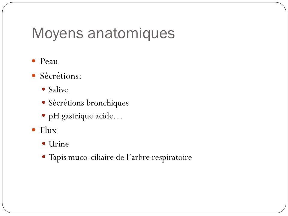 Moyens anatomiques Peau Sécrétions: Flux Salive Sécrétions bronchiques