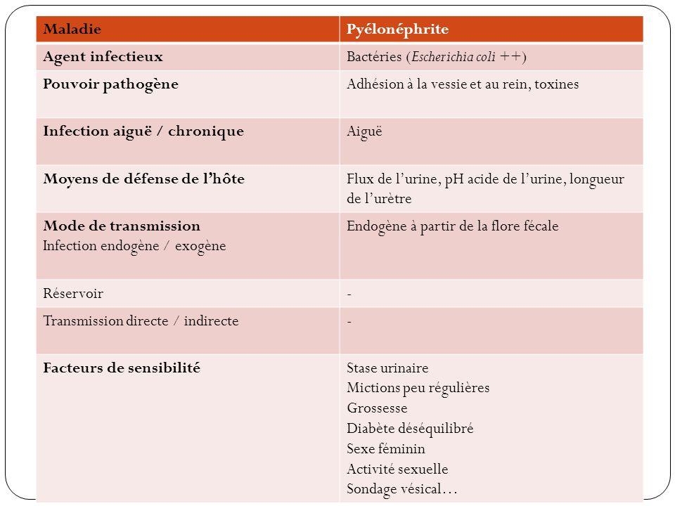 Maladie Pyélonéphrite. Agent infectieux. Bactéries (Escherichia coli ++) Pouvoir pathogène. Adhésion à la vessie et au rein, toxines.