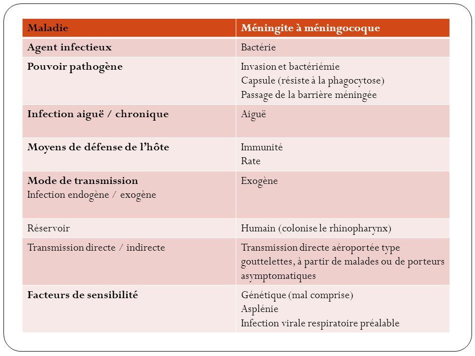 Maladie Méningite à méningocoque. Agent infectieux. Bactérie. Pouvoir pathogène. Invasion et bactériémie.