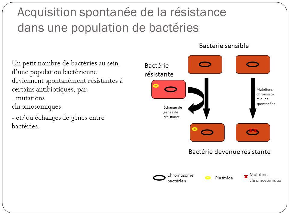 Acquisition spontanée de la résistance dans une population de bactéries