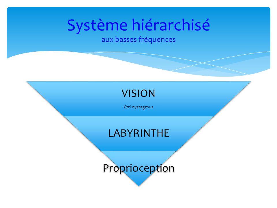 Système hiérarchisé aux basses fréquences