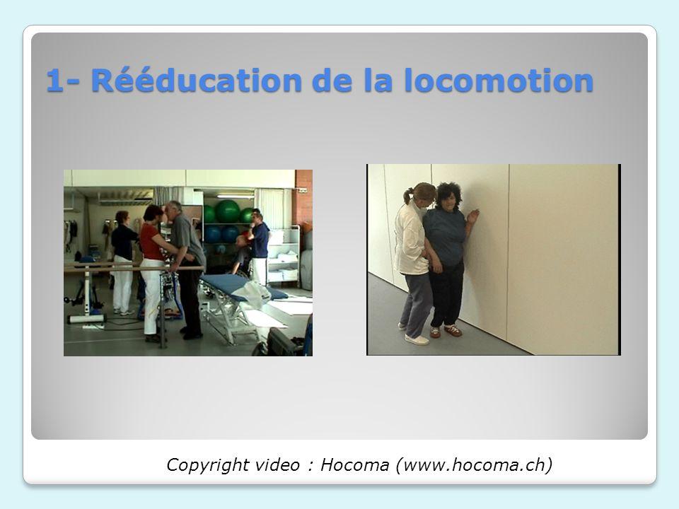 1- Rééducation de la locomotion