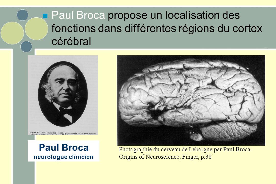 Paul Broca propose un localisation des fonctions dans différentes régions du cortex cérébral