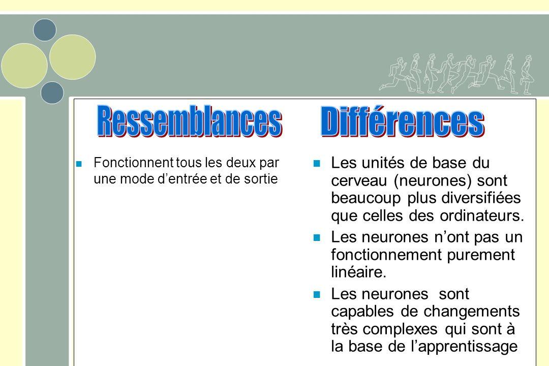 Ressemblances Différences