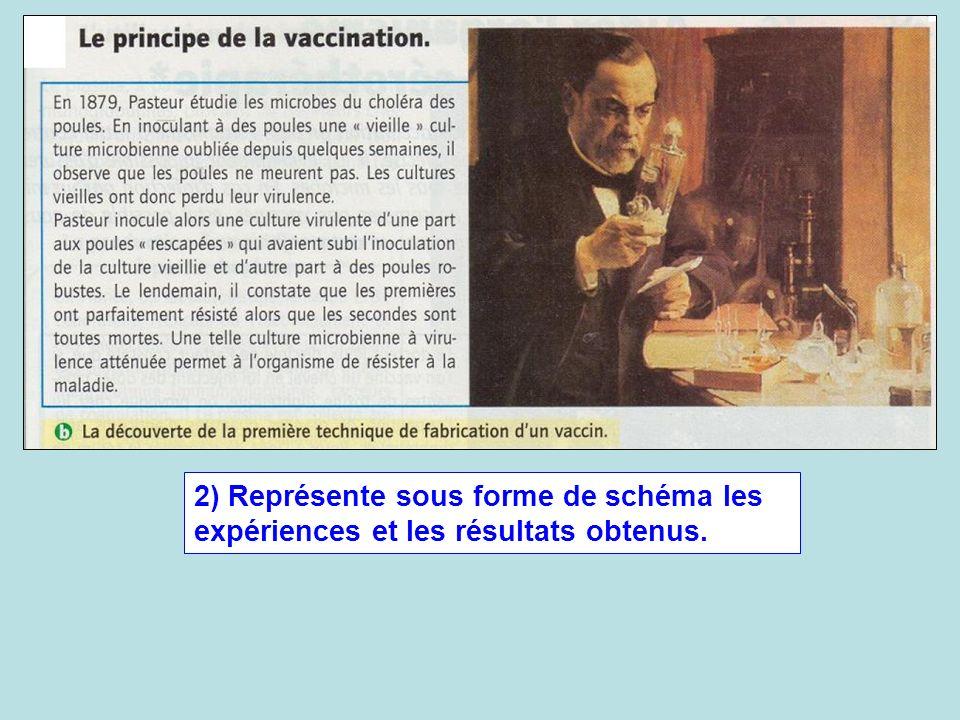 2) Représente sous forme de schéma les expériences et les résultats obtenus.