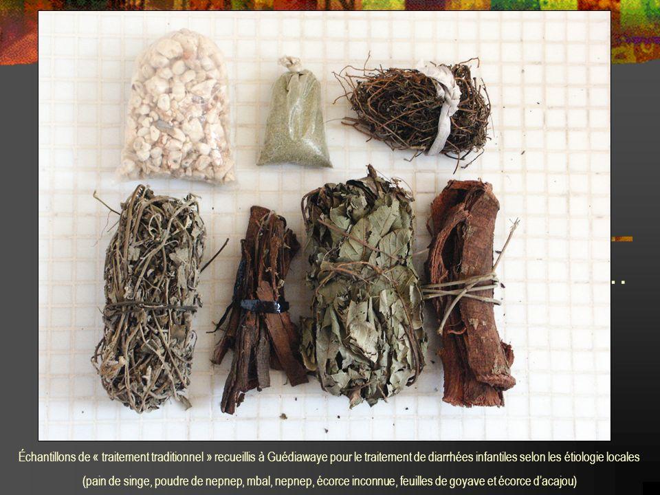… Échantillons de « traitement traditionnel » recueillis à Guédiawaye pour le traitement de diarrhées infantiles selon les étiologie locales.