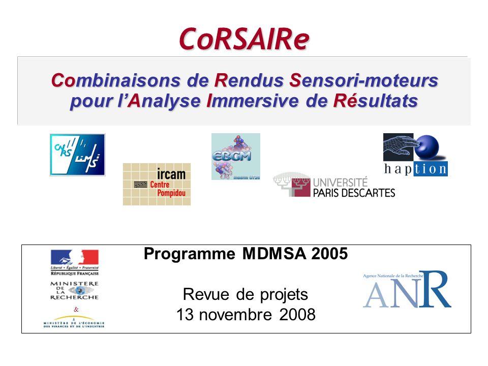 VECPAR 98 Programme MDMSA 2005 Revue de projets 13 novembre 2008