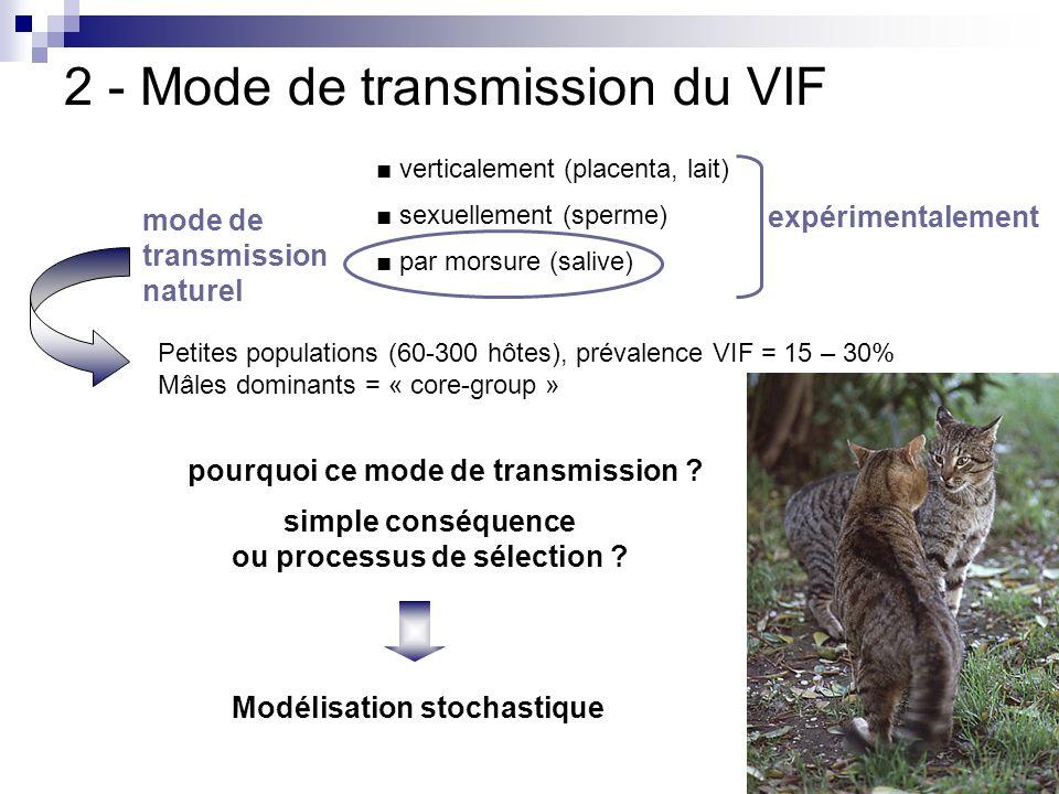 2 - Mode de transmission du VIF