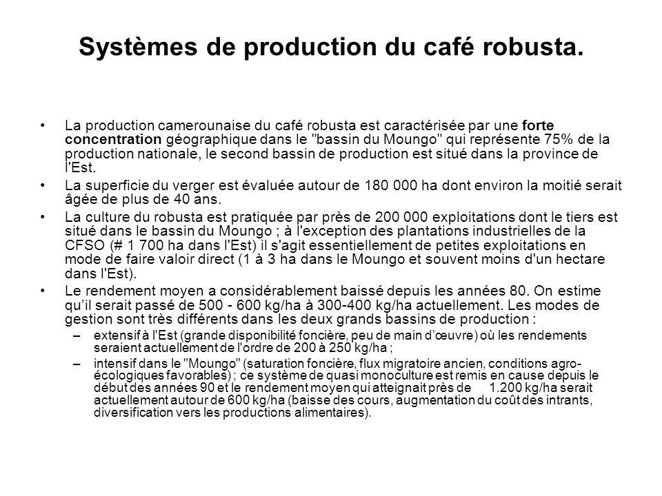 Systèmes de production du café robusta.