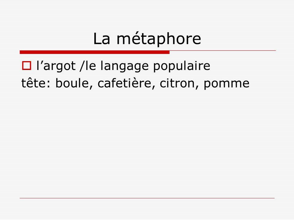 La métaphore l'argot /le langage populaire
