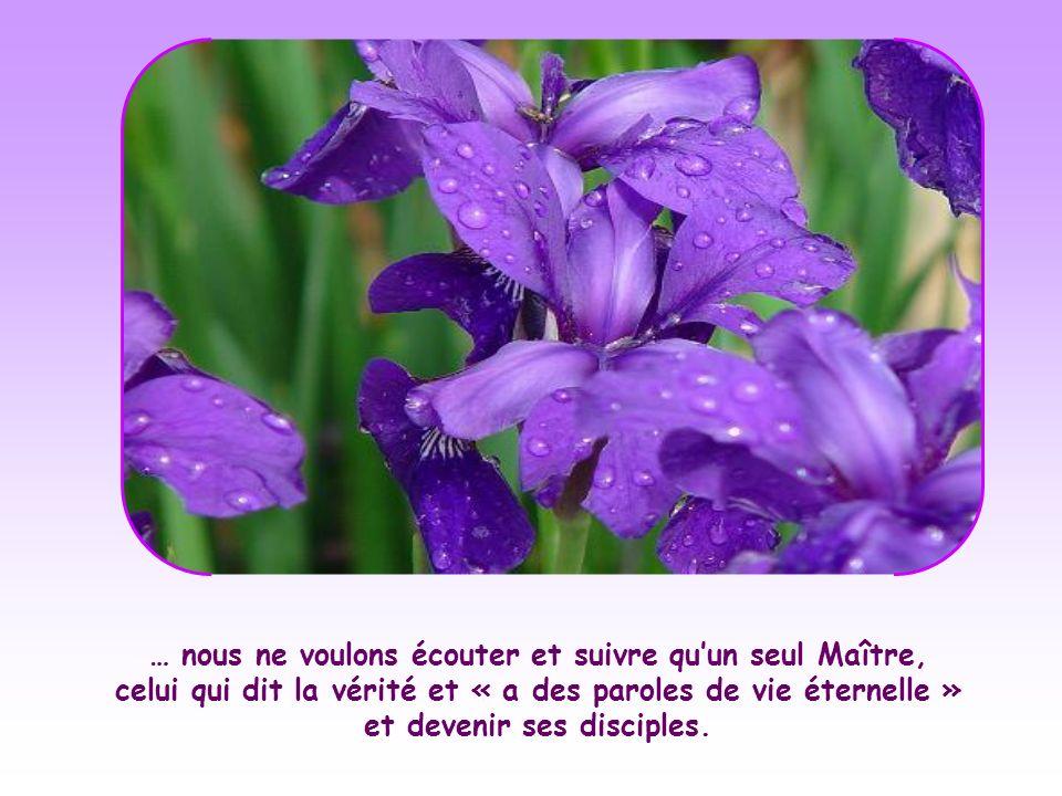 … nous ne voulons écouter et suivre qu'un seul Maître, celui qui dit la vérité et « a des paroles de vie éternelle » et devenir ses disciples.