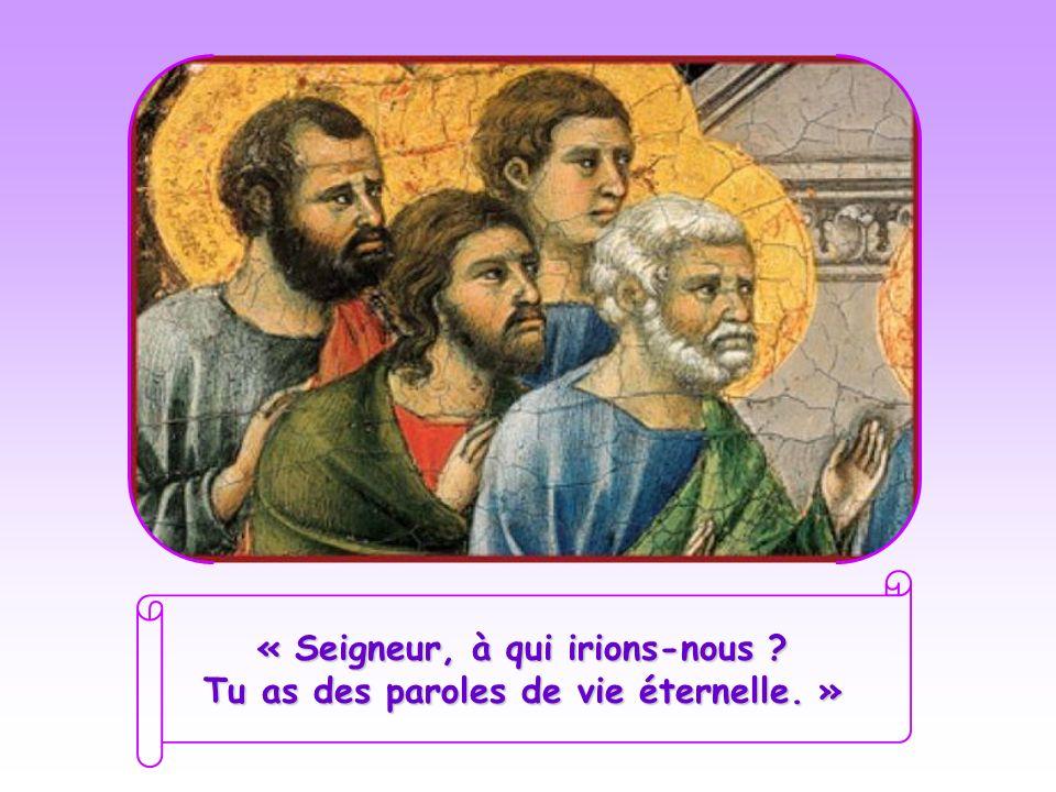 « Seigneur, à qui irions-nous Tu as des paroles de vie éternelle. »