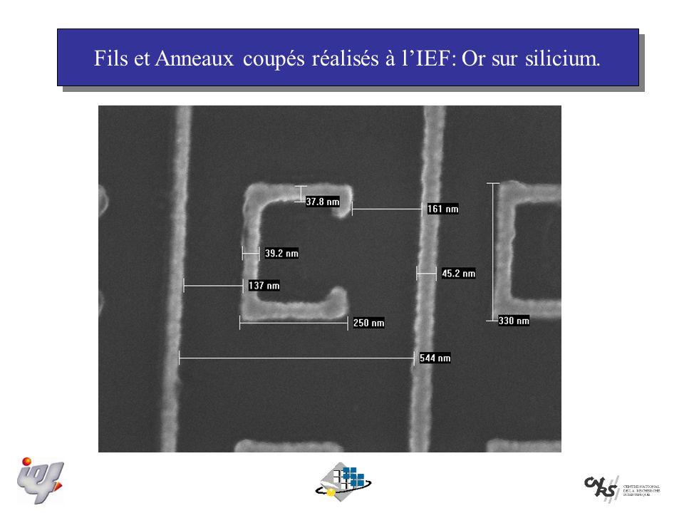 Fils et Anneaux coupés réalisés à l'IEF: Or sur silicium.