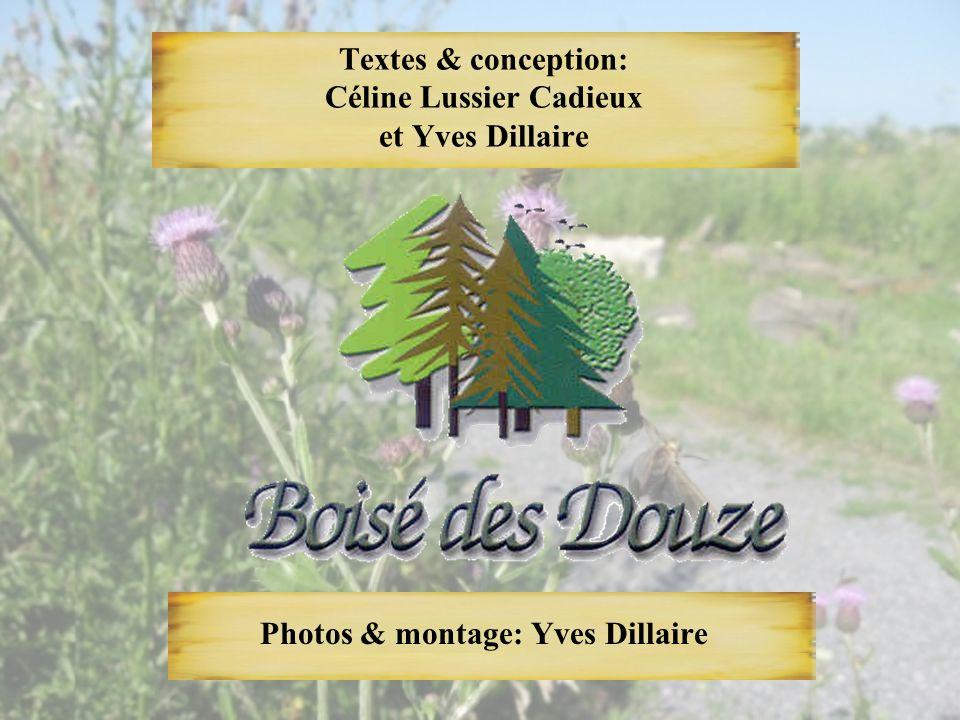 Textes & conception: Céline Lussier Cadieux et Yves Dillaire