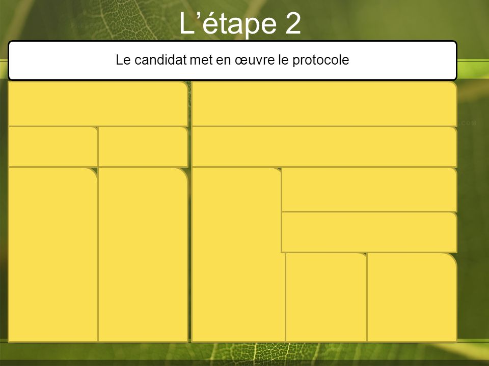 L'étape 2 Le candidat met en œuvre le protocole Niveau A Niveau B