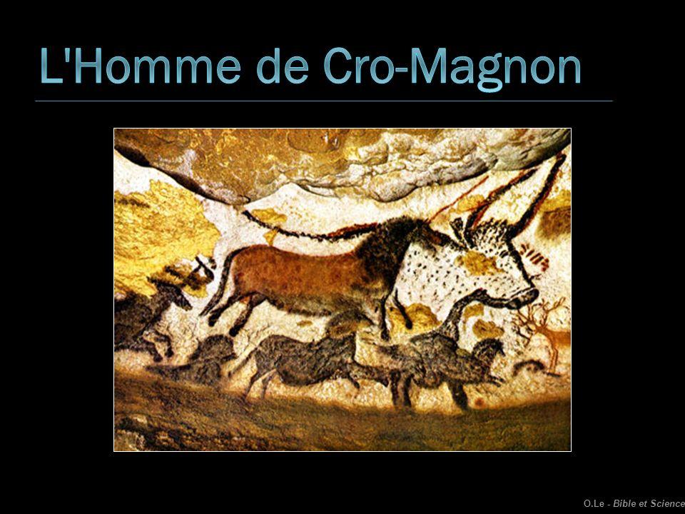 L Homme de Cro-Magnon O.Le - Bible et Science