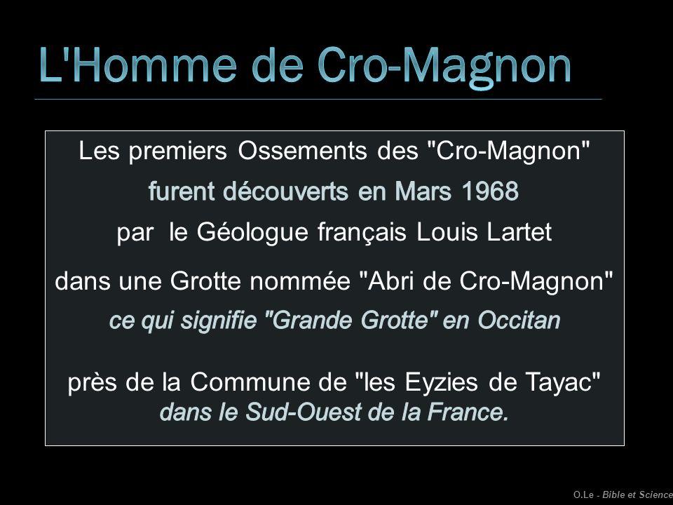 L Homme de Cro-Magnon Les premiers Ossements des Cro-Magnon