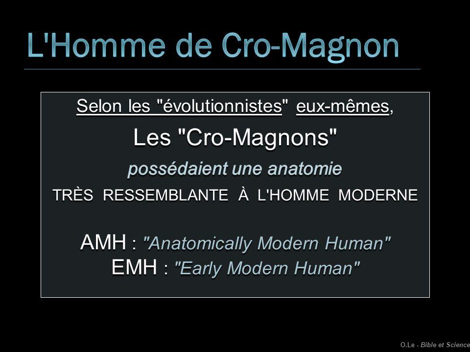 L Homme de Cro-Magnon Les Cro-Magnons
