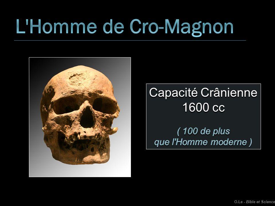 L Homme de Cro-Magnon Capacité Crânienne 1600 cc ( 100 de plus