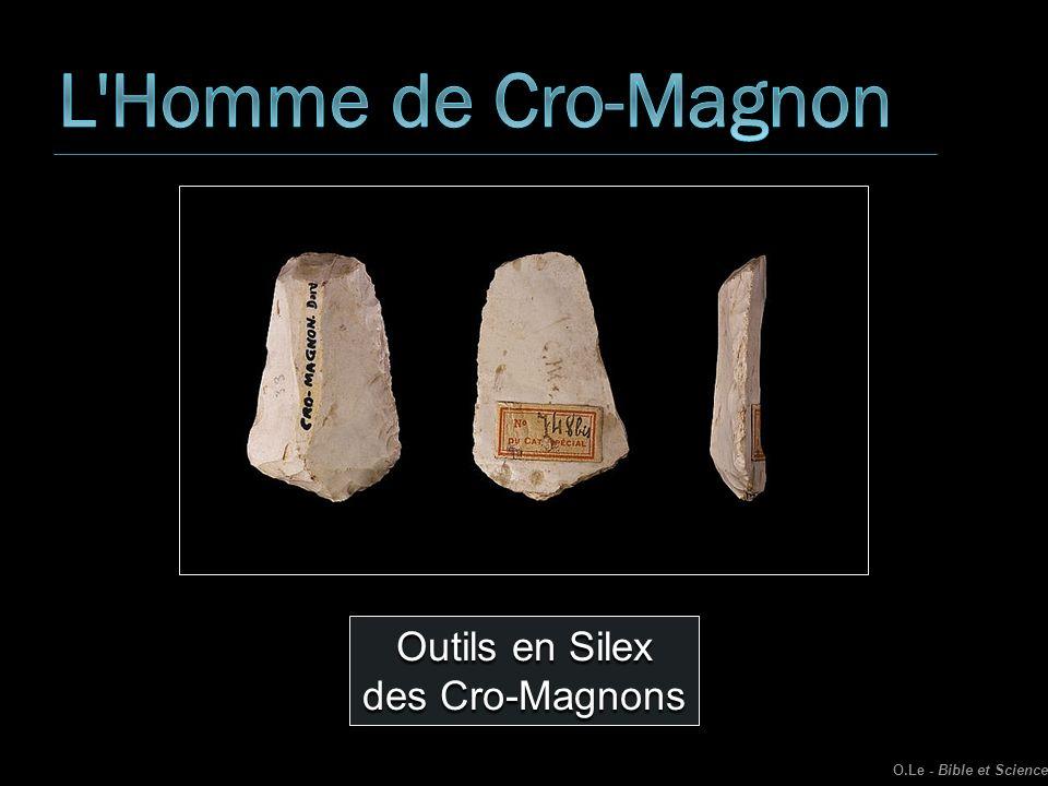 L Homme de Cro-Magnon Outils en Silex des Cro-Magnons