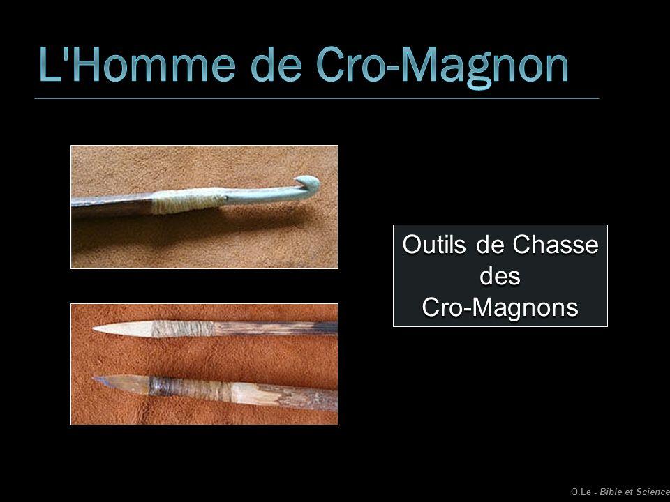L Homme de Cro-Magnon Outils de Chasse des Cro-Magnons