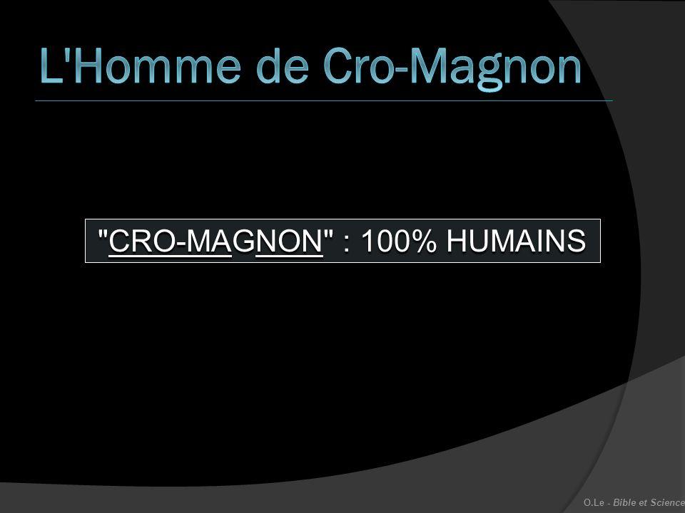 L Homme de Cro-Magnon CRO-MAGNON : 100% HUMAINS