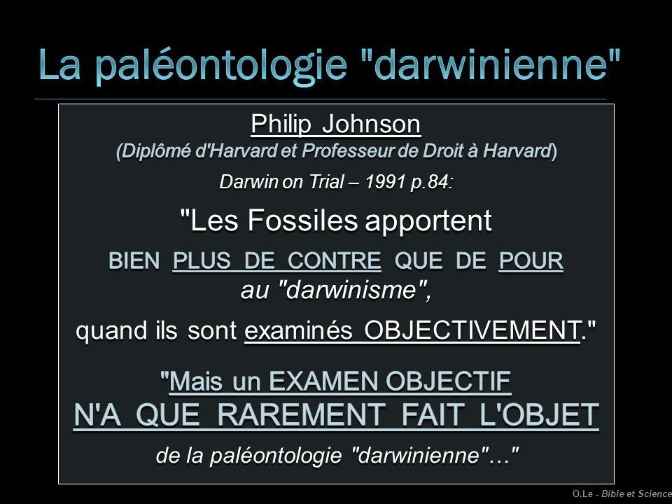 La paléontologie darwinienne