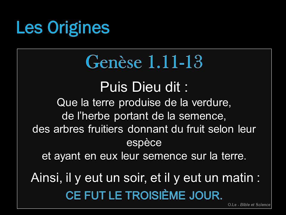 Genèse 1.11-13 Les Origines Puis Dieu dit :