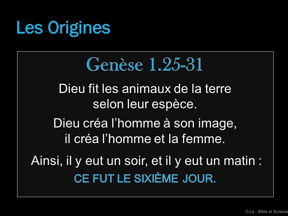 Genèse 1.25-31 Les Origines Dieu fit les animaux de la terre