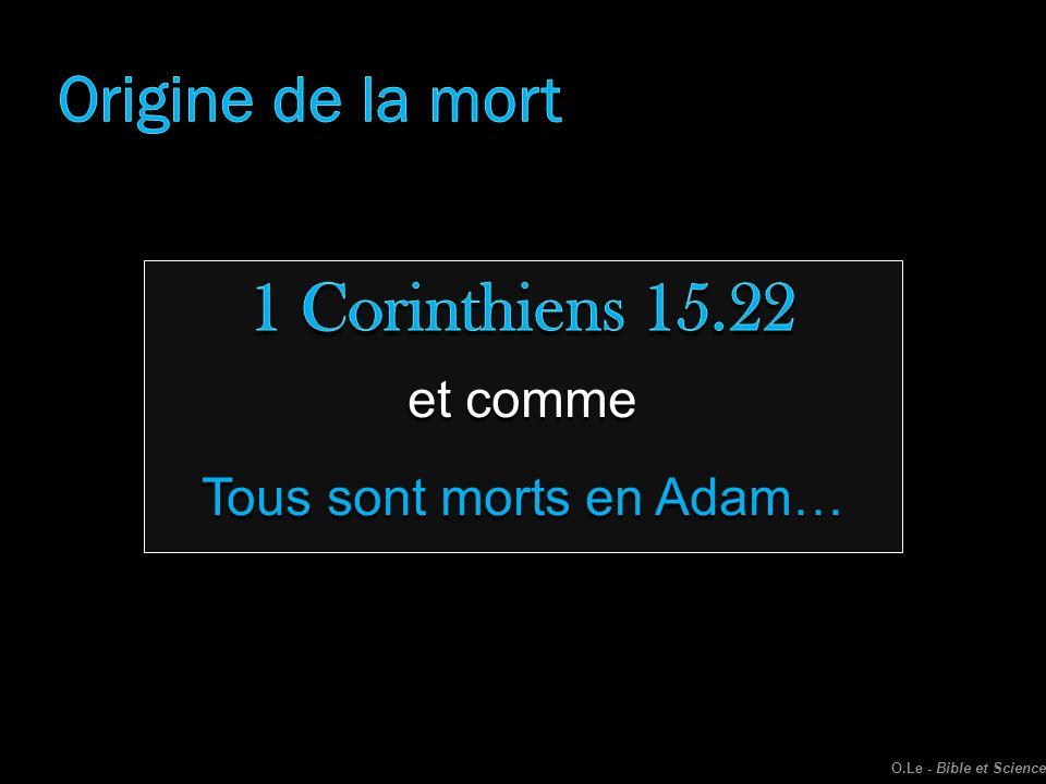 Tous sont morts en Adam…