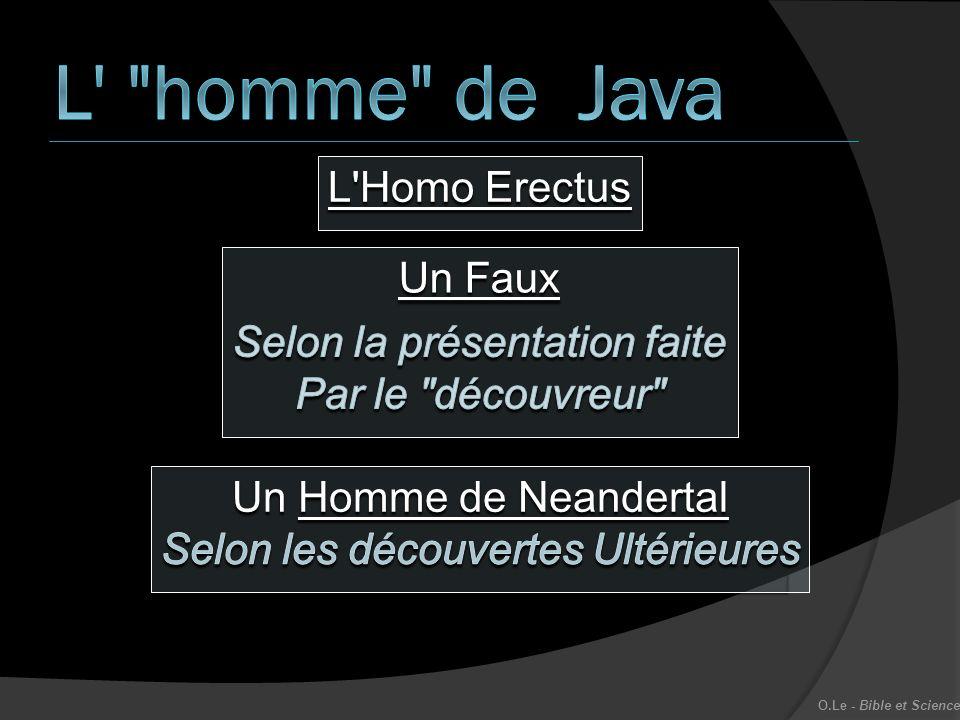 L homme de Java L Homo Erectus Un Faux Selon la présentation faite