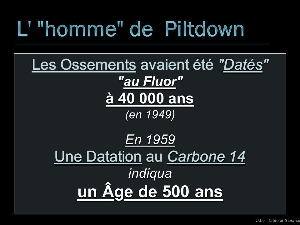 L homme de Piltdown un Âge de 500 ans