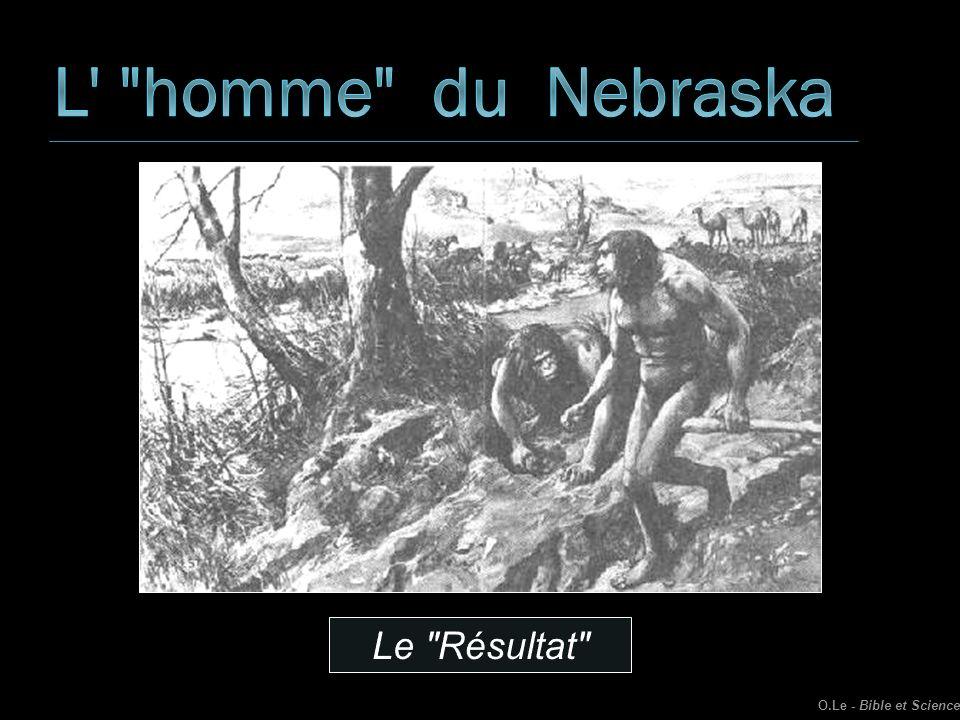 L homme du Nebraska Le Résultat O.Le - Bible et Science