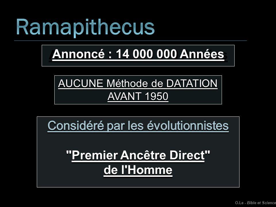 Premier Ancêtre Direct