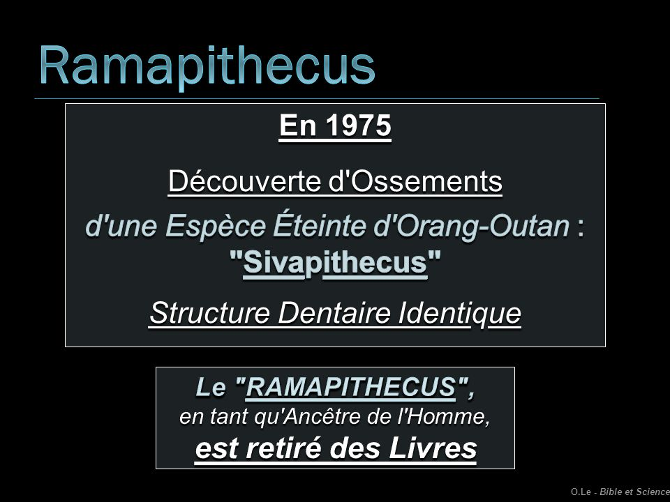 Ramapithecus En 1975 Découverte d Ossements