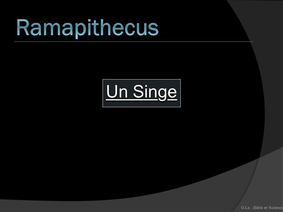 Ramapithecus Un Singe O.Le - Bible et Science