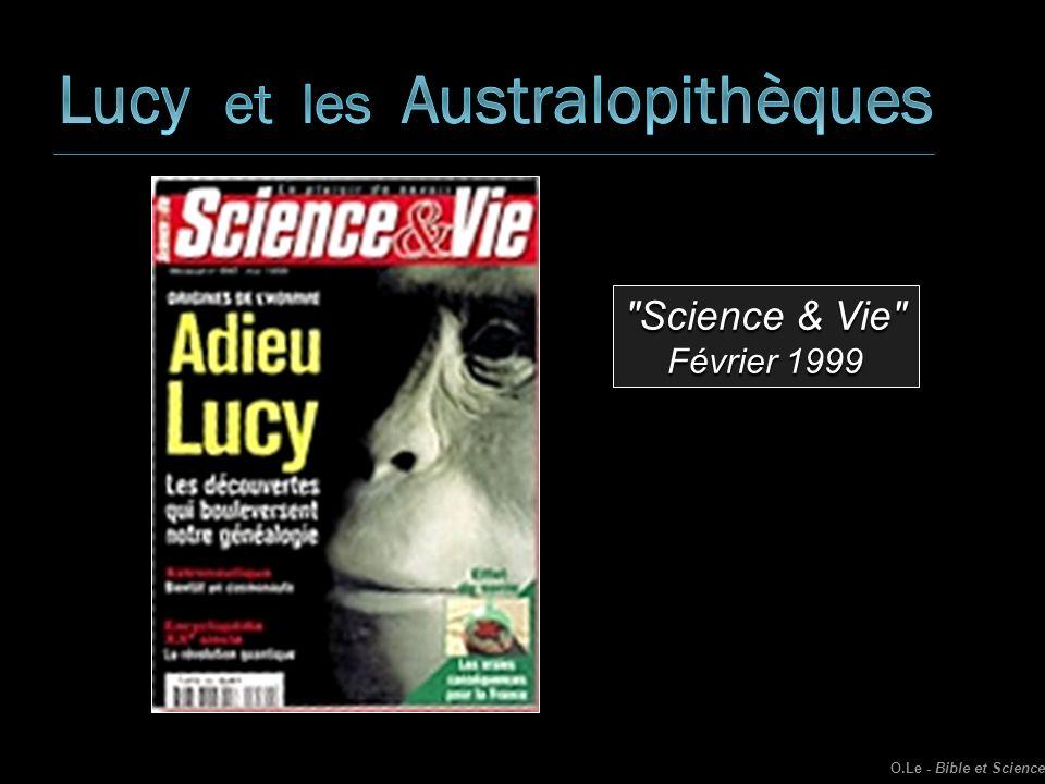 Lucy et les Australopithèques
