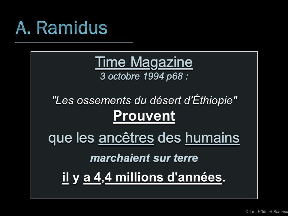 A. Ramidus Time Magazine Prouvent que les ancêtres des humains
