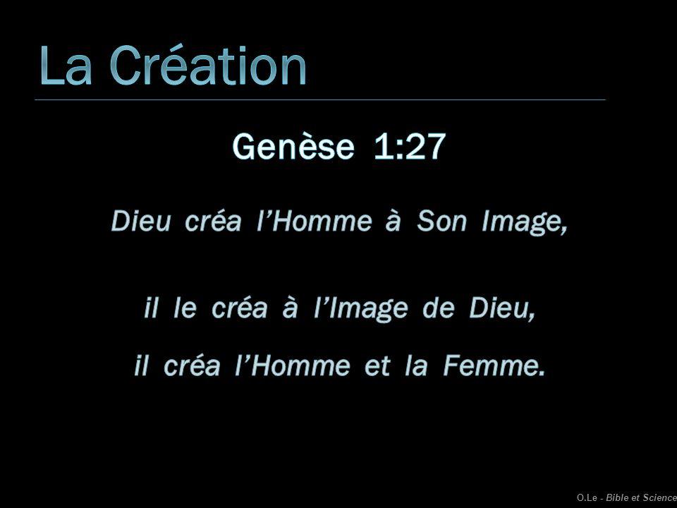 La Création Genèse 1:27 Dieu créa l'Homme à Son Image,