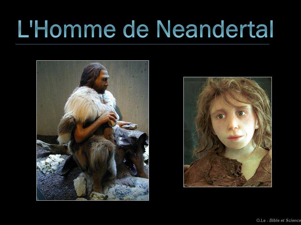 L Homme de Neandertal O.Le - Bible et Science