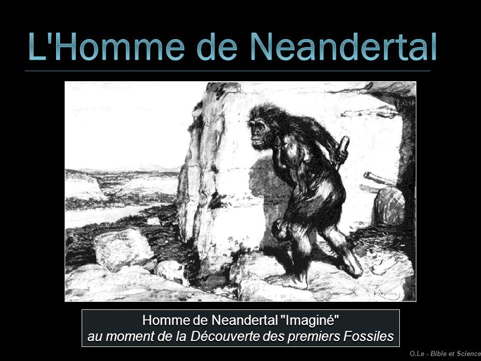 L Homme de Neandertal Homme de Neandertal Imaginé
