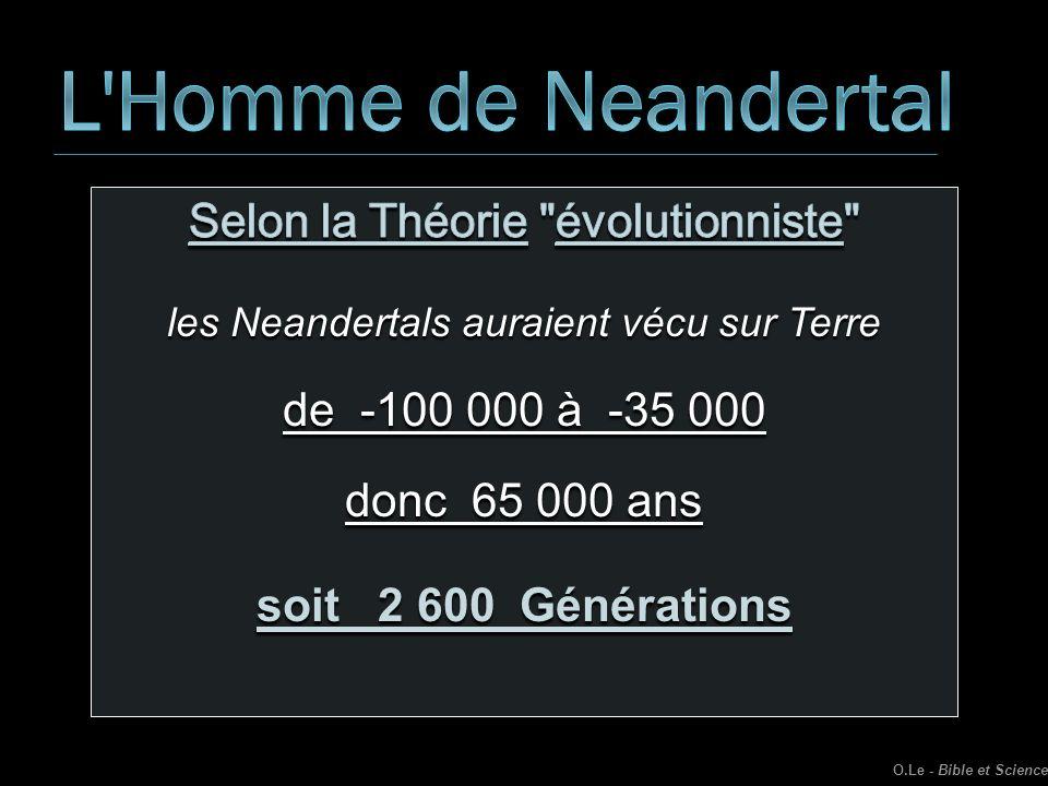 L Homme de Neandertal Selon la Théorie évolutionniste