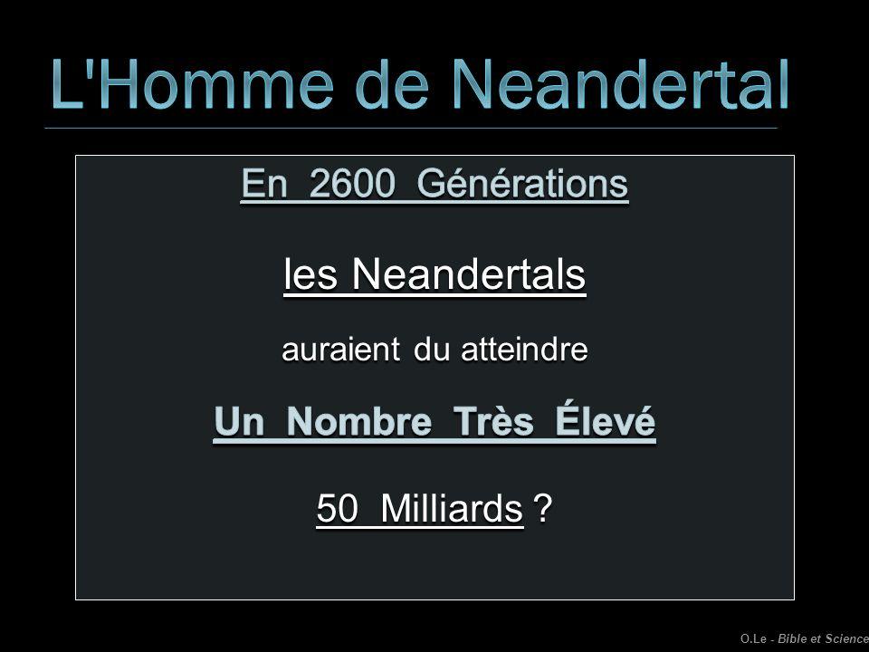 L Homme de Neandertal les Neandertals En 2600 Générations