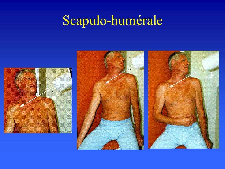 Scapulo-humérale