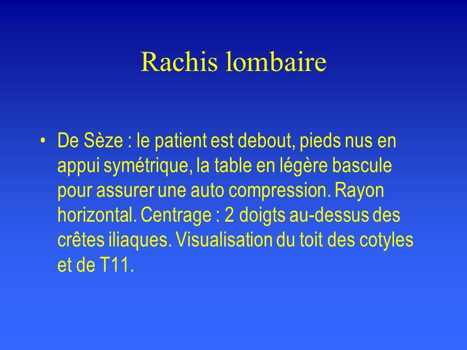 Rachis lombaire