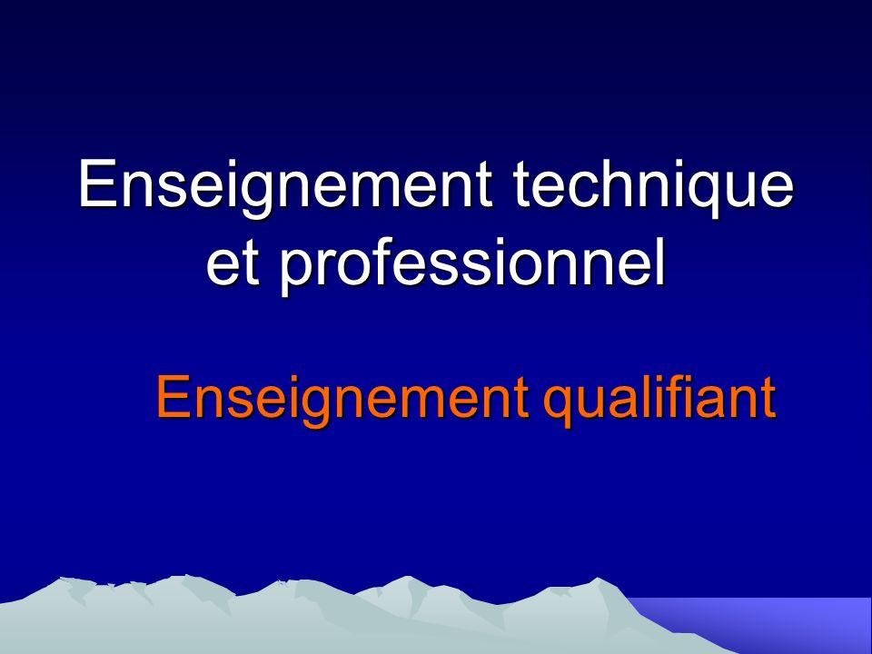 Enseignement technique et professionnel