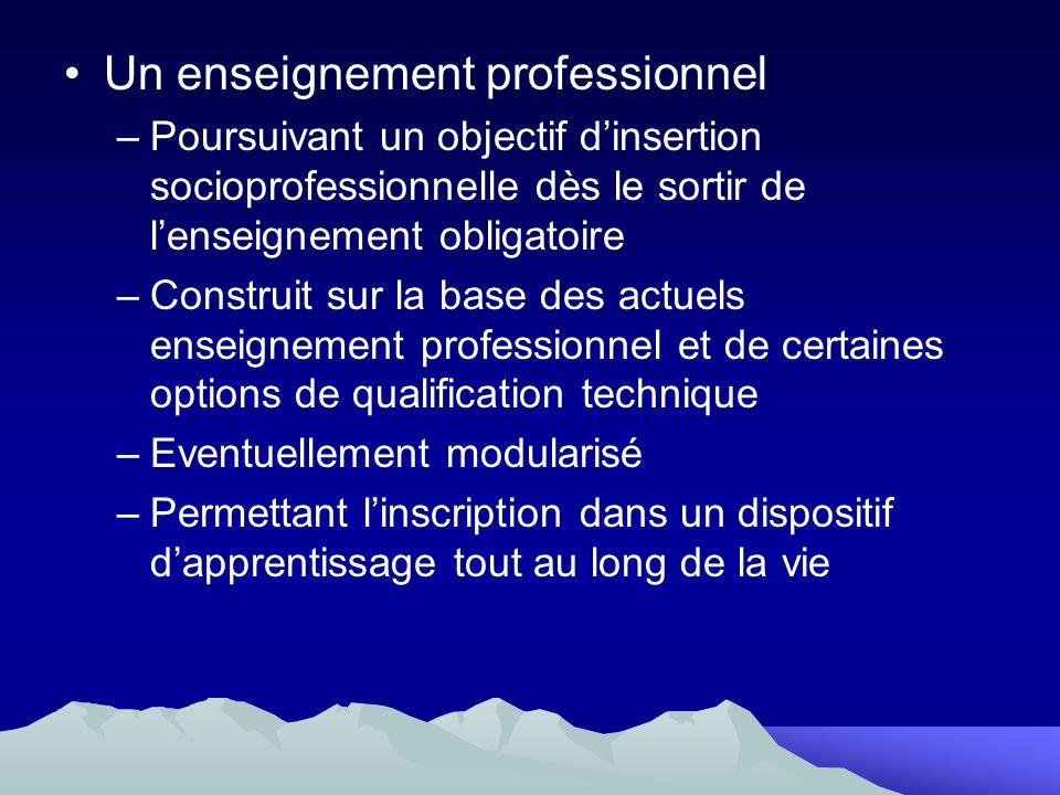 Un enseignement professionnel