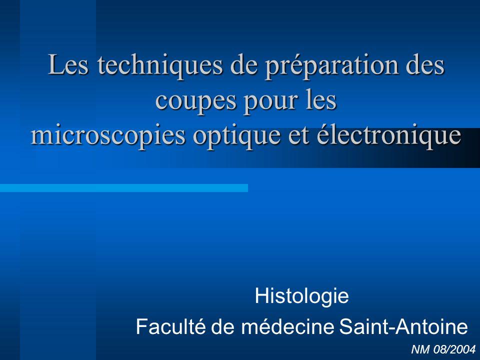 Histologie Faculté de médecine Saint-Antoine NM 08/2004